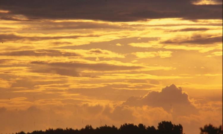 stockvault-sunset113021